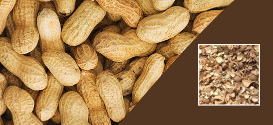 Peanut shell powder